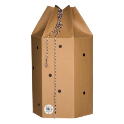 Verassing Box